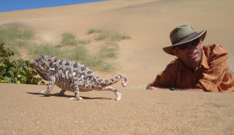 living desert - destination swakopmund