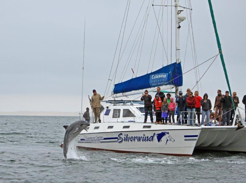 catamaran charters - destination swakopmund
