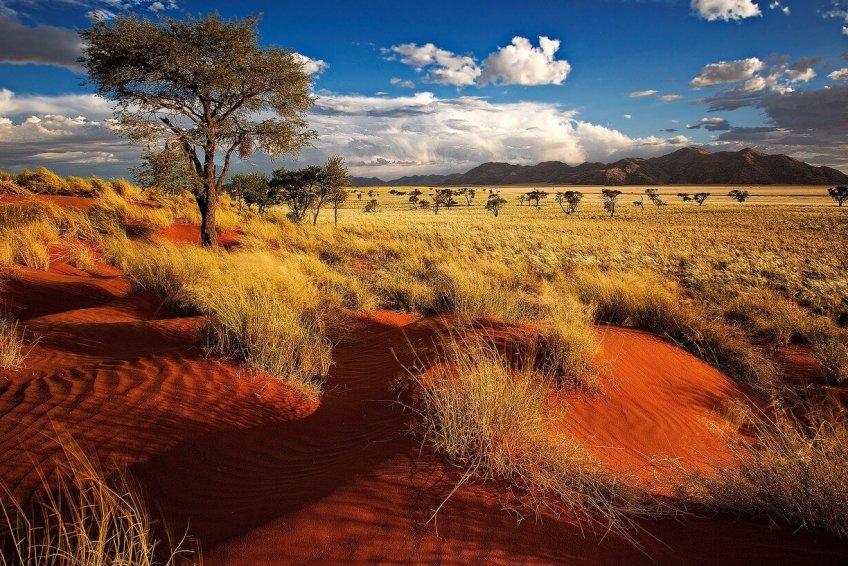 Tokkies travel - namibia